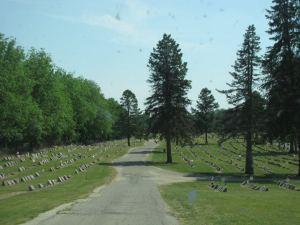 st john's cemetery jackson mi 5-20-12